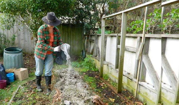 Как удобрять землю весной