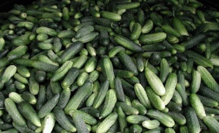 Требования для сбора урожая