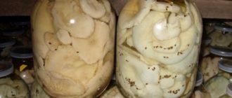 лакомством считаются соленые грибочки