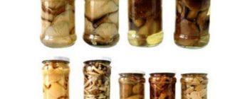Солить таким способом можно все виды грибочков. Для этого грибы следует очистить, помыть, большие - разрезать. Виды с млечным соком предварительно вымачивают. Затем обработанные грибочки бросают в кипящую воду, которую следует посолить из расчета 2 столовые ложки на 1 литр воды. Варку продолжают в зависимости от вида грибов. Рыжики можно просто пару раз окатить кипящей водой, грузди варятся около 10 минут, все остальные грибы для верности лучше проварить около 30-40 минут.
