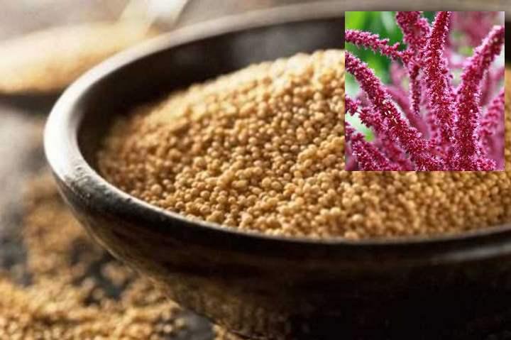 Семена амарантовые