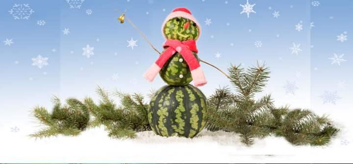 Снеговик из арбуза