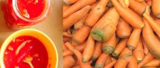 Морковное лечо