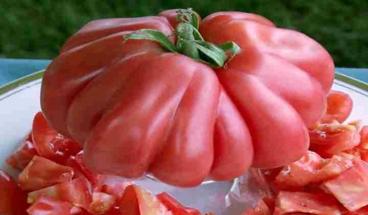 Дольками помидор