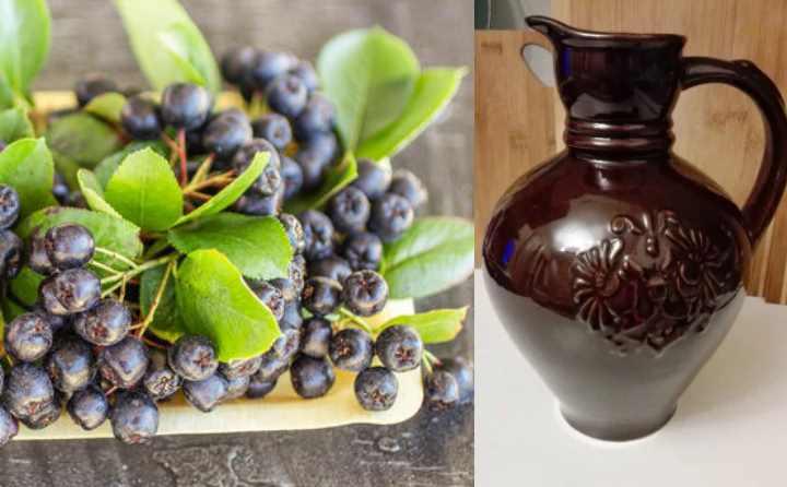 Как приготовить вкусное вино?