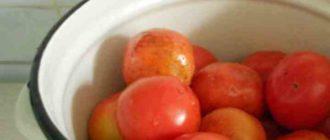 Соленные помидоры – любимая заготовка миллионов людей