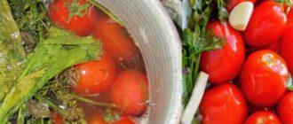 Секреты соленых помидор в ведре