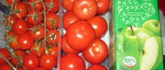Чем полезны маринованные помидоры