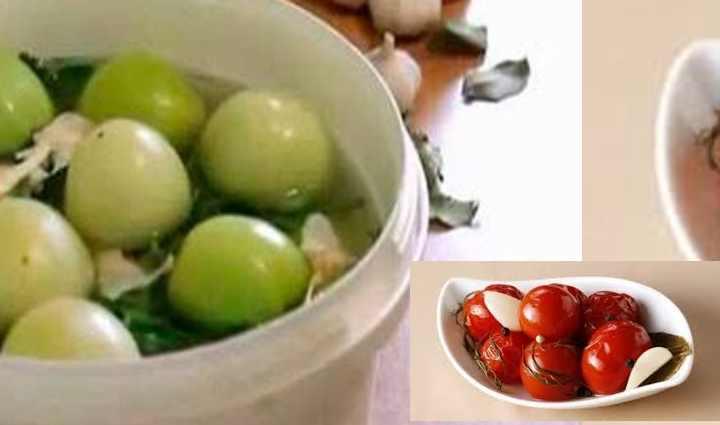 Какие помидоры подойдут для засолки?