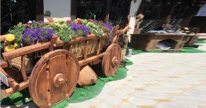 Отличный способ украсить свой двор своими любимыми цветами